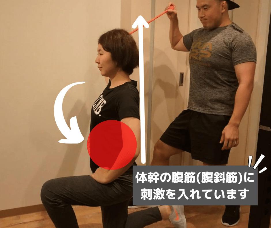 体幹トレーニングの画像